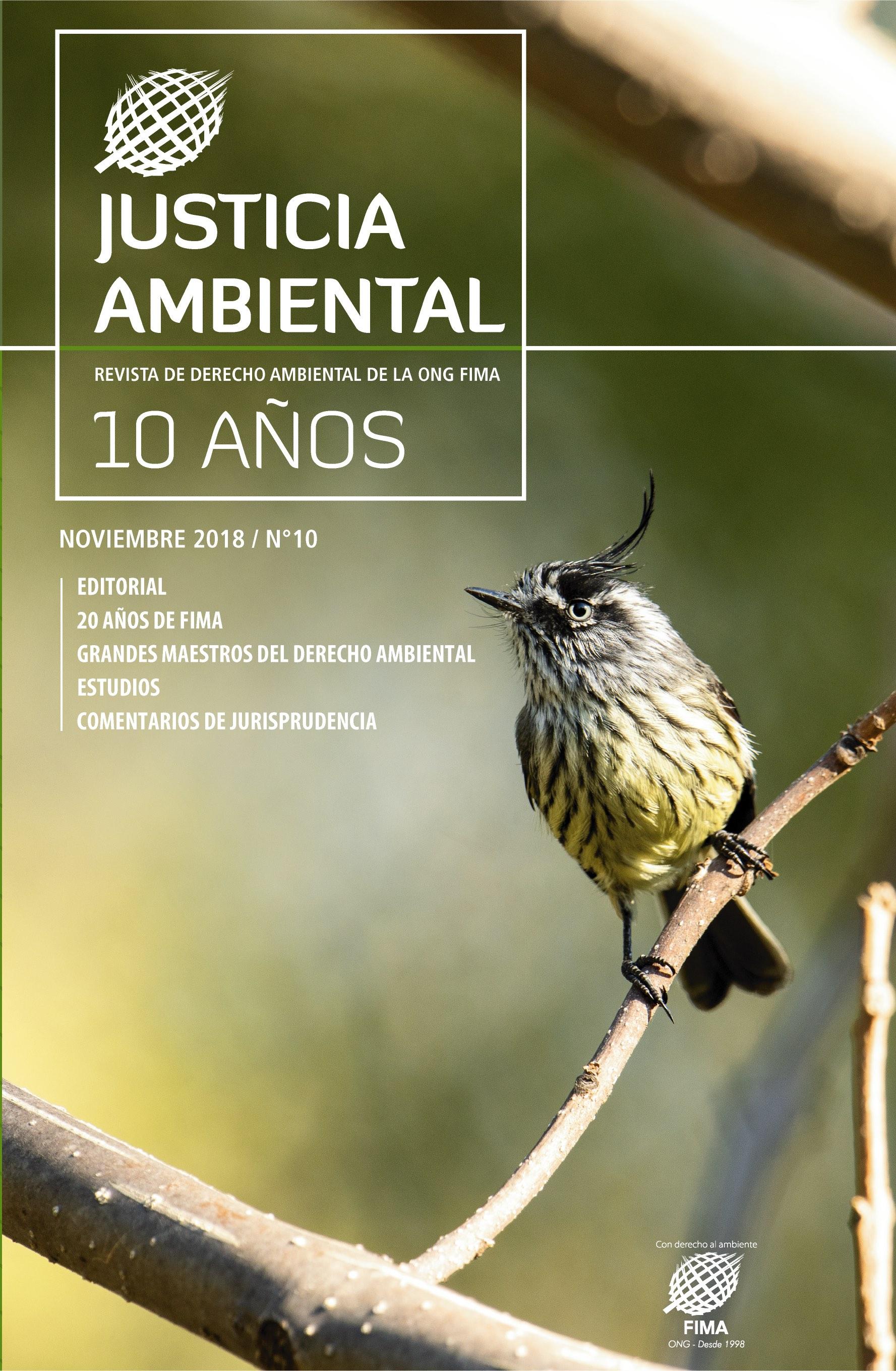 Portada Revista Justicia Ambiental 10